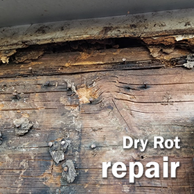 Sacramento Dry Rot Specialists Button